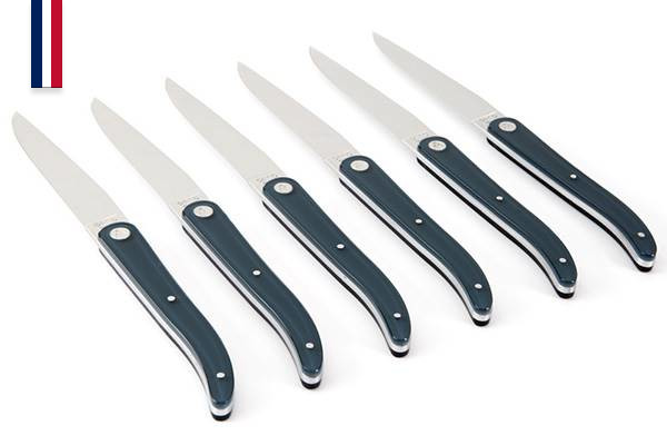 6-piece table knife set, 11cm blade, Laguiole Evolution Sens–Made In France